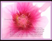Digital Photograph Pink Floral Bible Scripture Corinthians Instant Download