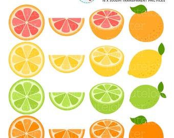 Citrus Fruits Clipart Set - clip art set of fruits, lemon, grapefruit, lime, orange - personal use, small commercial use, instant download