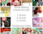 5 Tissue Paper Pom Poms, Wedding Decor, Nursery, Birthday Party, Party Decorations, Tissue Paper Flowers, Communion, Baby Shower, Reception