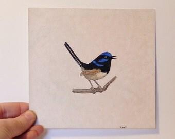 "Bird painting - Blue feathers - Blue wren - Animal painting - Original Acrylic painting - Nature painting - Wall art - 5.7 x 5.7"""