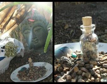 ANT MEDICINE Sacred Stones Capricorn Energy January Birthday Native American Meditation Altar Persevere Productive Teamwork Reiki Gift Boxx