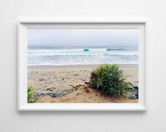 California Beach Decor - San Diego Torrey Pines Beach Photography - Pacific Ocean Decor, Coastal Decor - Large Wall Art Prints Available