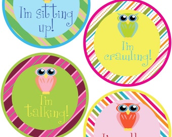 ADD ON My First Stickers for Baby, My First Stickers  - Owls & Stripes -  Baby My First Stickers -Baby Shower Gift - Baby