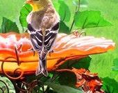 Suncatcher BIRD BATH, Stained glass, Garden Decor, copper garden, Neon Orange, Office Gift, Housewarming Gift