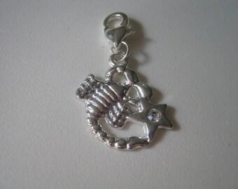 Silver Plated Scorpio Rhinestone Zodiac Clip on Charm
