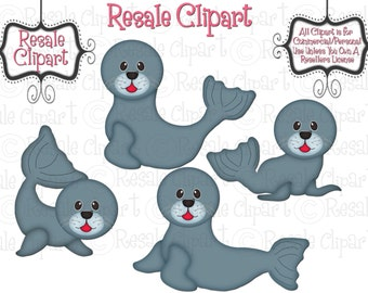 Baby Seals 1 Clipart (Digital Download)