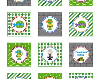Ninja Turtle Cupcake Toppers and Wrappers, Ninja Turtle Party, Printable, Instant Download, Digital