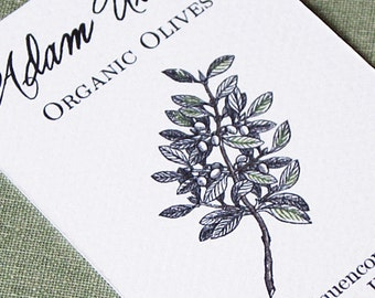 Olive Branch Calling Card, personalized business card, set of 50