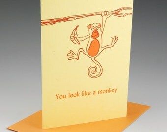 You look like a monkey (126)