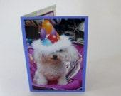 Miniature Toy Poodle Birthday Card, Funny Birthday Cards, Dog Birthday Card