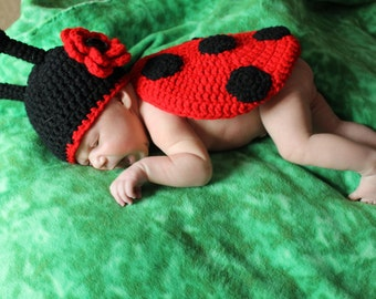 Little Ladybug Baby Photo Prop Set  *Newborn - 12 mos.