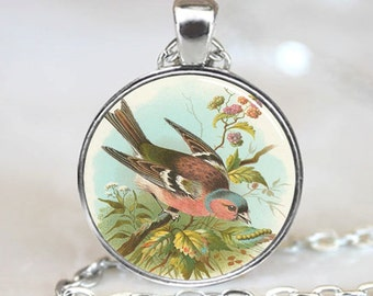 Chaffinch Bird Pendant, Bird Photo Necklace, Silver Plated,  (PD0483)
