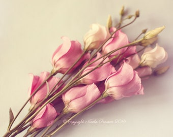 flower print - whimsical photography, pretty photo, pastel colour, home decor, gifts for her, wall art