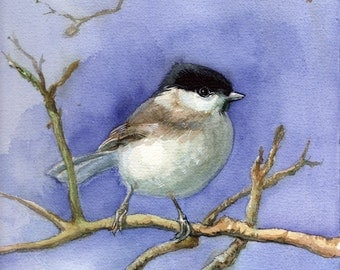 Chickadee painting, fine art / giclee print of an original watercolor painting