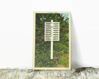 Sign Post in Maine - Linen Postcard - Retro Souvenir - Lynchville, ME