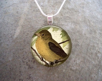 Bird Jewelry - Glass Pendant Necklace - Victorian Bird 16