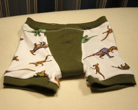 Boys Dinosaur Underwear Little Boys Boxer Briefs Kids Boxer
