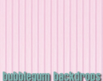 Pink Wainscot - Vinyl Photography  Backdrop Photo Prop