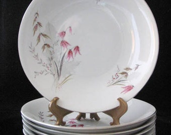 Royal Duchess Mountain Bell Coupe Soup Bowls Vintage 1940s Set of 6 GORGEOUS