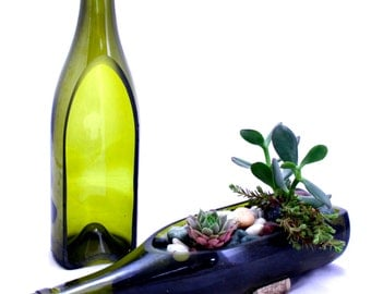 Wine Bottle Garden Succulent Planter - DIY Build Your Own Garden - Bottle Only
