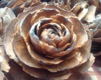 Cedar Rose Pine Cone Heads - All natural