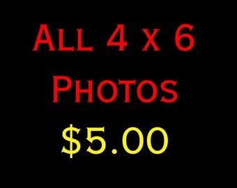 4 x 6 Photograph