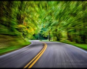 Speeding Through The Forest E42