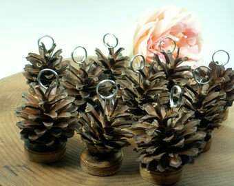 Rustic 15 Pine Cone Table Number, Wedding Table Numbers, Holiday , Wedding, Business Party, Christmas decor