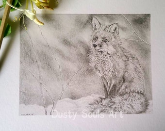 Limited edition print 'Winter Fox' (19.5x15) Limited to 20 only. Unmounted
