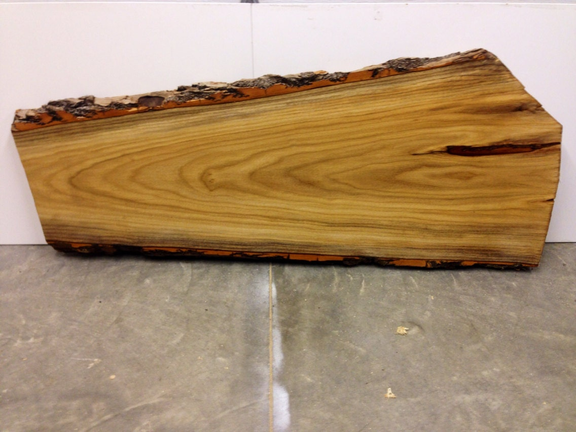 Live Edge Butternut Wood Slab Will Make A Great By