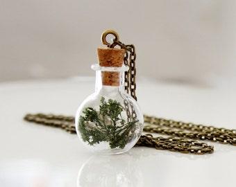 Corked Terrarium Necklace