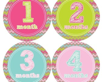 Monthly Baby Stickers Baby Month Stickers Baby Girl Month Stickers Monthly Photo Stickers Monthly Milestone Stickers 227