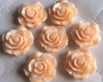 6 pcs 23 mm Cabochon Flowers, Light Peach resin flower, 23 mm peach resin flower, 23 mm light peach rose, 23 mm peach cabochon,peach flower