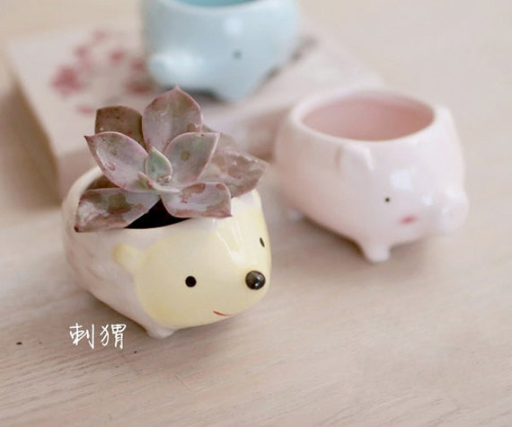Cute Animal Ceramic Air Plant Container By Skhappyshopping