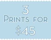 Three 8x10 Prints for Forty Five Dollars sale – 3 prints for 45