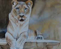 15 lion ess - 3 9