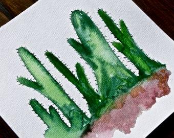 Cacti Watercolor 6x6