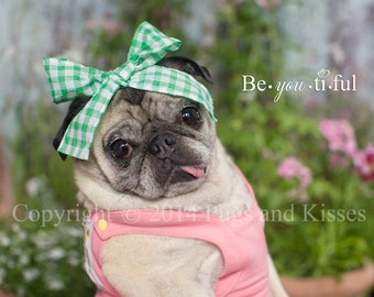 Be You Ti Ful Pug Portrait 5 x7, 8x10, 11x14 and 16 x 20 Art Print by Pugs and Kisses