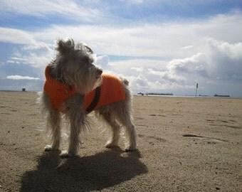 Custom Comfy Cozy Dog Sweaters