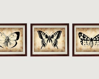 INSTANT DOWNLOAD Parchment Style Black Set of 3 Butterfly Butterflies Printable Print Art Wall Decor Vintage Style Animals Nature