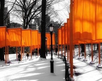 Gates by Christo in NYC in the Snow in Central Park