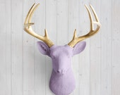 Wall Charmers™ in Lavender + Gold Antler - Faux Head Deer Metallic Purple Fake Animal Resin Ceramic Taxidermy Fauxidermy Wall Decor Mount