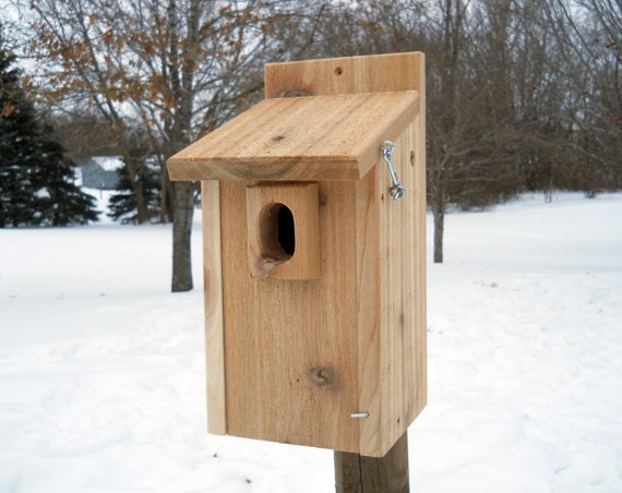 https://www.etsy.com/listing/174315924/bluebird-house-with-predator-guard-wood?ref=shop_home_active_7