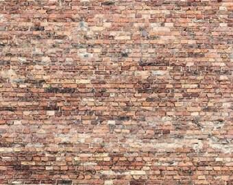 Brick wall backdrop,portait vinyl background,vinyl backdrop L-543