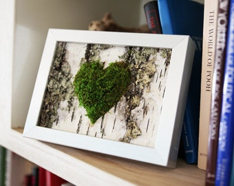 Moss Heart & Birch Bark Rustic Framed Art - Zero Care, Real and Preserved.  Unique gift!