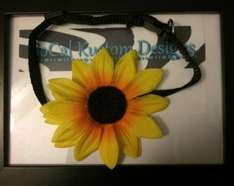 sunflower dog collar (SMALL)