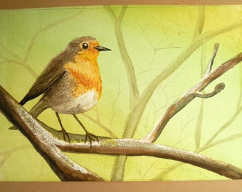 Watercolour robin perched on branch,