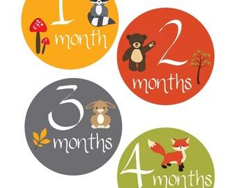 Milestone Stickers, Baby Month Stickers, Monthly Stickers, Monthly Baby Stickers, Baby Shower Gifts, Baby Month Sticker Gender Neutral, U11