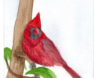 Cardinal...........Original Watercolor Painting