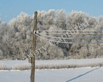 Icy Clothesline Birdhouse Landscape Photography Digital Download Snow Canada Winter Nature Trees Decor Photo